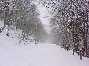 Naše hory v zime